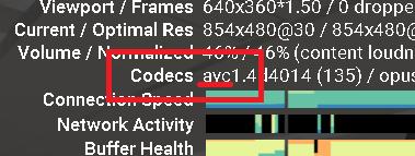 詳細統計情報をクリックすると表示されるAVCの表示画面